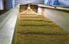 Spent Grains Handling
